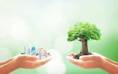 ESG in Hotel Real Estate: Systemic solutions for a systemic problem