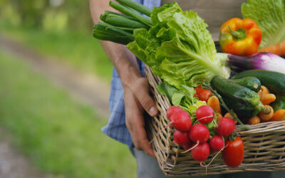 Sustainable food: a guide for seasonal and regional food shopping